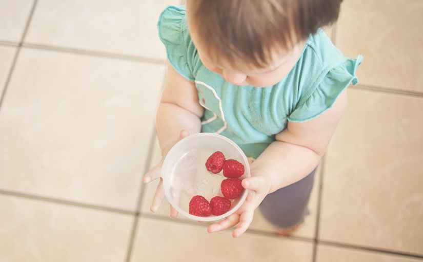 Raspberry Coconut Macaroons